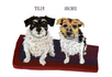 Opening Summer commissions for pet portraits