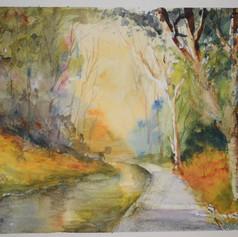 'An Autumn Forest'
