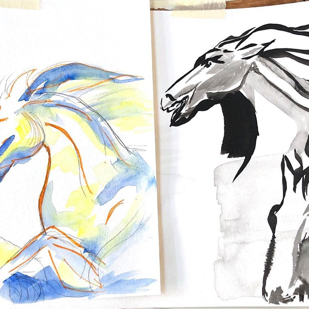 Horse sketches with ink