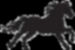 horse%2520black%2520and%2520white_edited