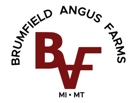 New Branding for Brumfield Angus Farms