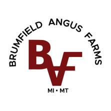 Brumfield Angus Farms