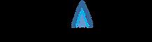 Pinnacle Medical Solutions Logo.png