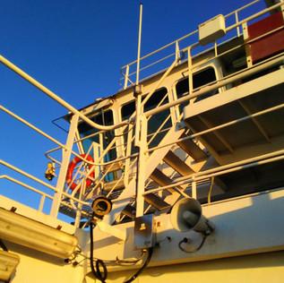 Ferry Railings