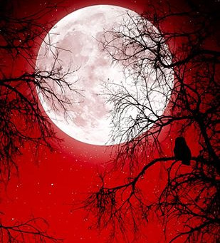 Aries Full Moon--Reckoning and Resolution