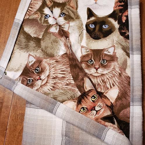 Four Breeds Kitties