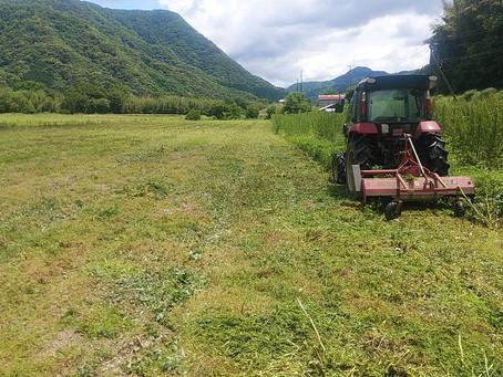 田津の農地維持、いい方向へ向かいそう