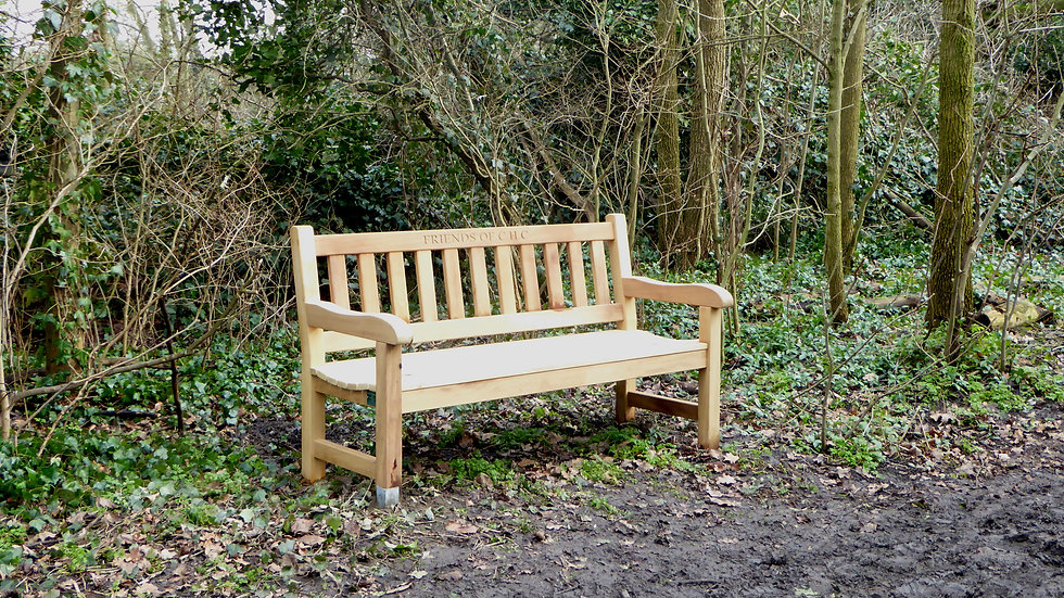 Bench along Woodland path.jpg