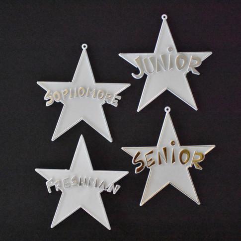 Grade Level Stars