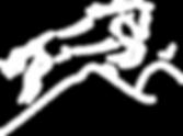 logo centre equestre le domino