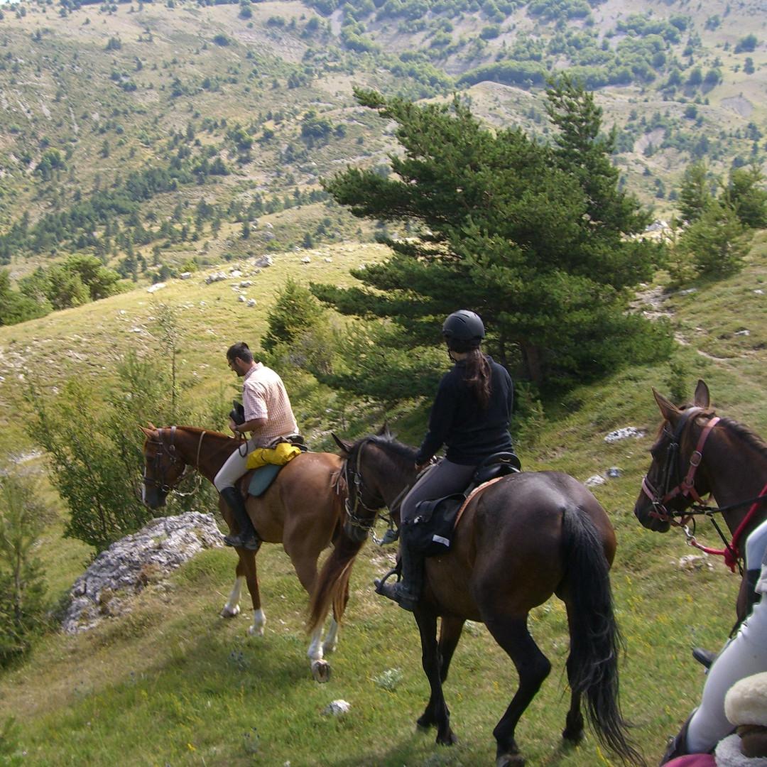 Les Alpes de Haute-Provence
