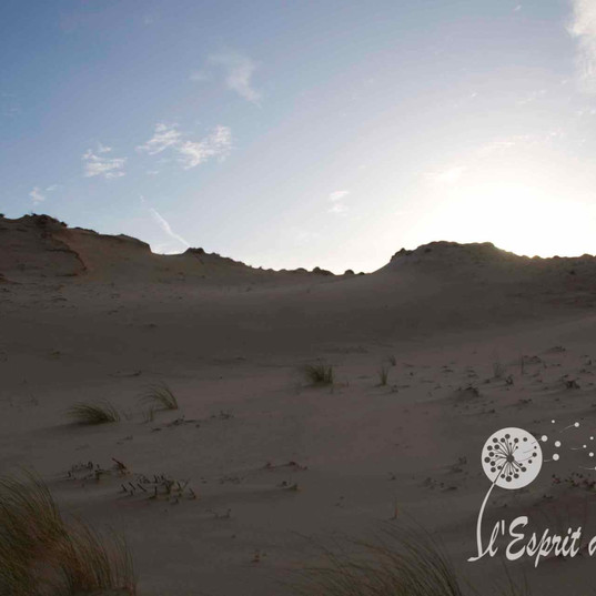 Dunes de sable Seignosse