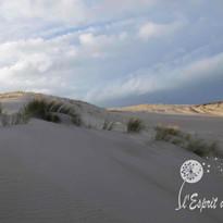 Dunes Seignosse