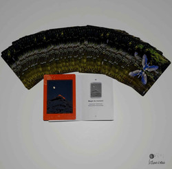 Cartes Oracle Nature