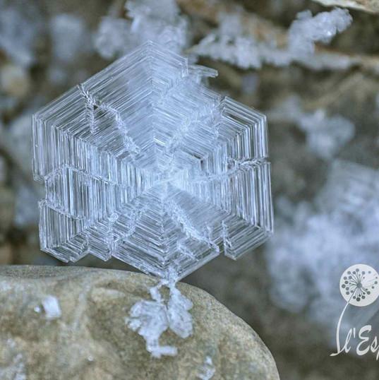Cristal de glace