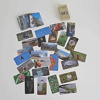 Jeu de cartes photo langage