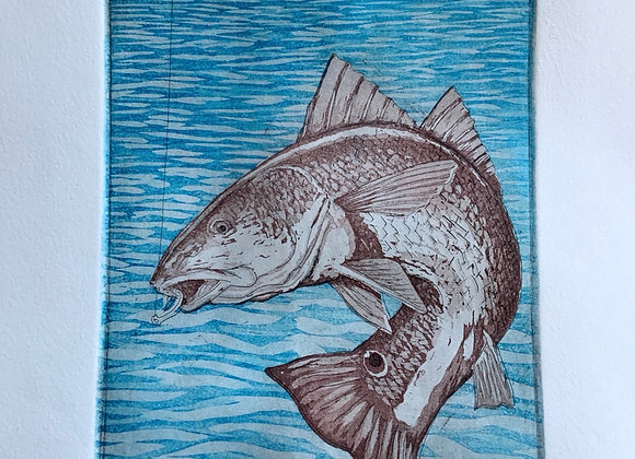 Redfish, intaglio print - 5/5 limited edition