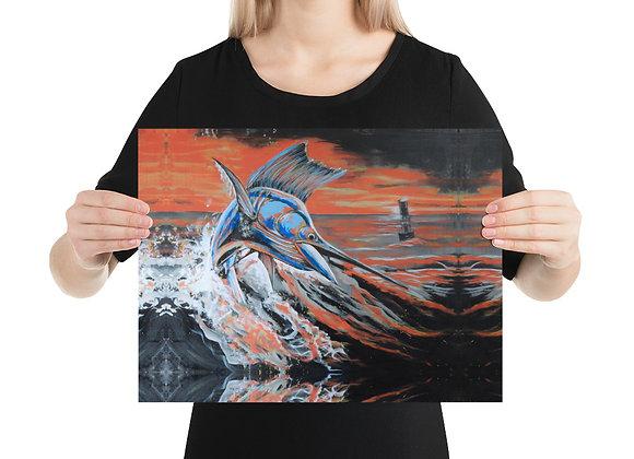 Q1 - Sailfish