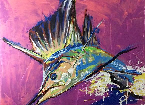 Sailfish no.1
