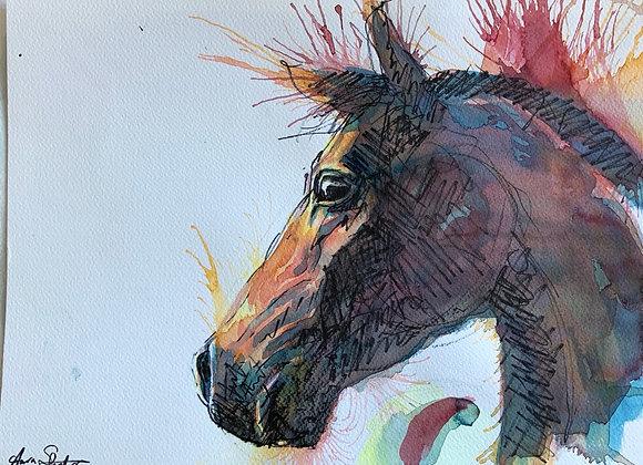 Horse study, side profile