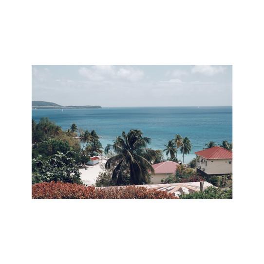 Martinique #3681, 2019