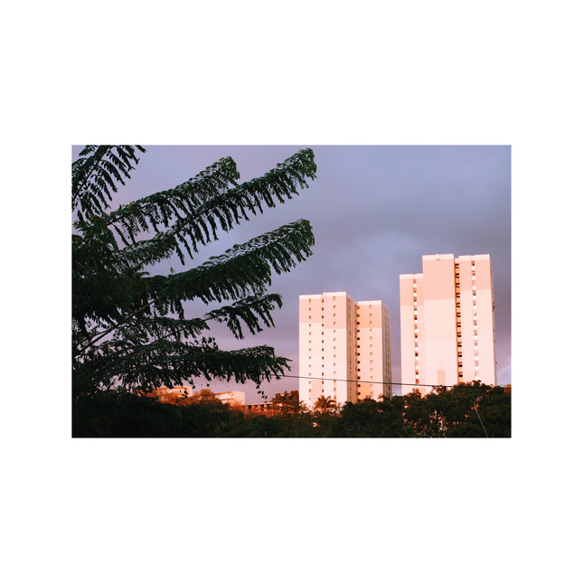 Martinique #3914, 2019