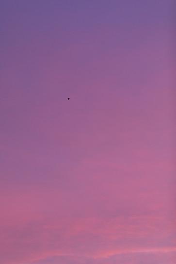 Sky #9711, 2019