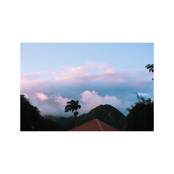 Martinique #3911, 2019