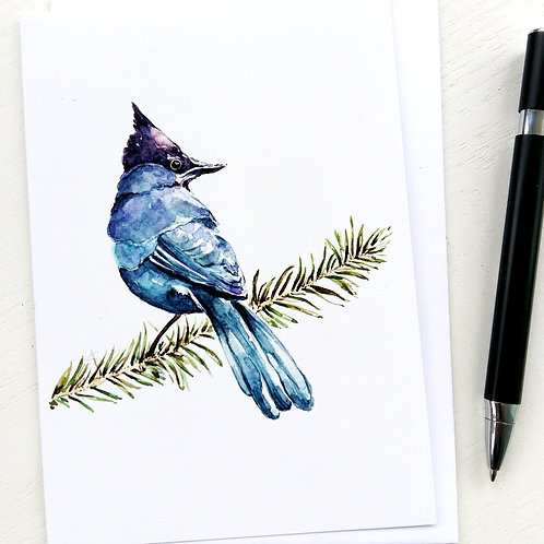 GREETING CARD, Blue Jay