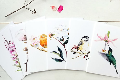 NOTECARDS, Bundle of 6