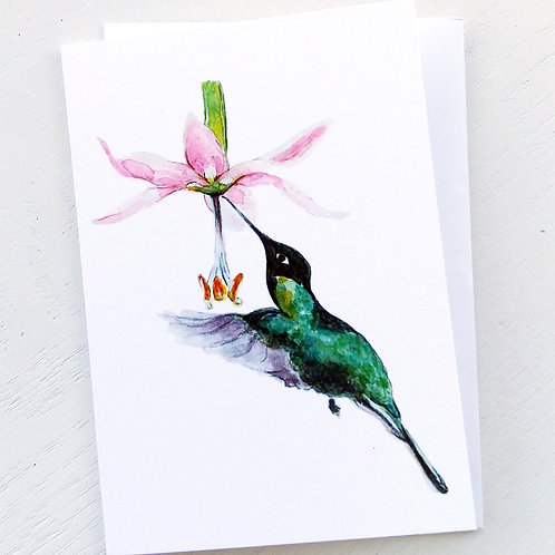 NOTECARD, Hummingbird