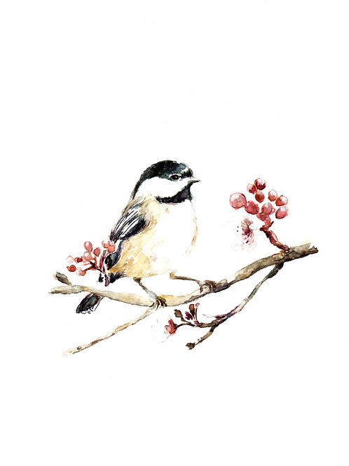 Chickadee and Blossoms, ART PRINT