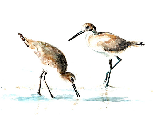 Sandpipers Art Print