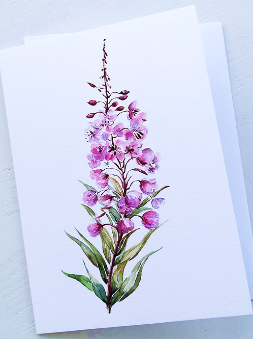 GREETING CARD, Fireweed