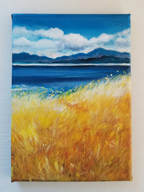 Helliwell Grasses, Hornby Island SOLD
