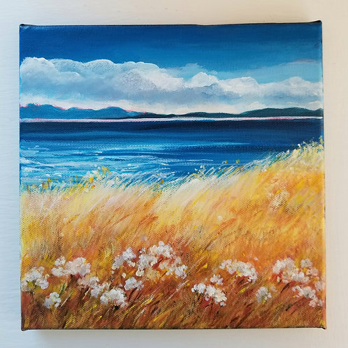 Grassy Point, Hornby Island, SOLD