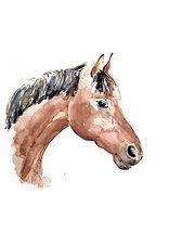 Horse 3 final.jpg