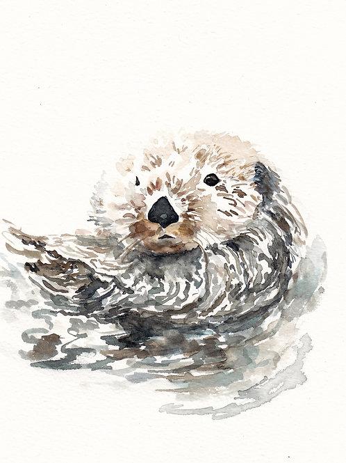 """Otter, ART PRINT, 8"""" x 10"""""""