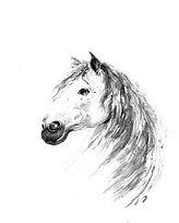 Grey Horse, final.jpg