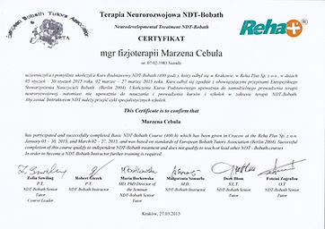 Certyfikowany terapeuta metody ndt Bobat