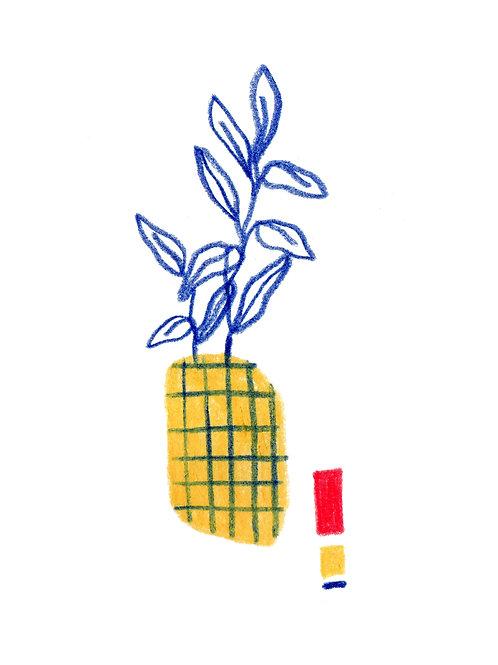 Planta bauhaus