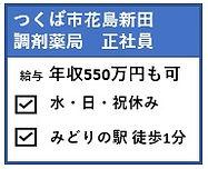 つくば市花島新田.jpg