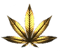 cannabis.png
