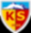 1280px-Kayserispor_logo.svg.png