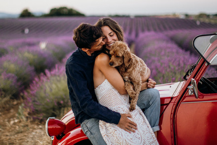 Engagement Fotoshooting in Provence