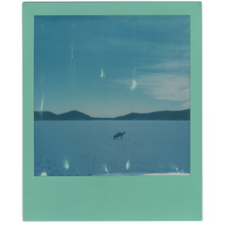 sx70_201.png