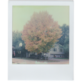 sx70_92.png