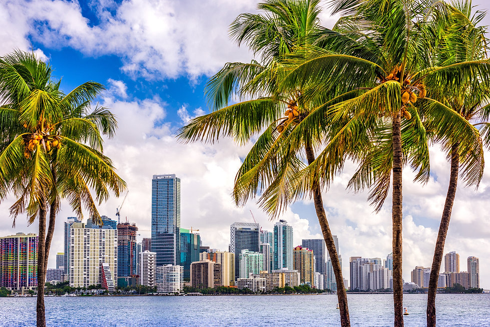 Miami, Florida, USA tropical downtown sk