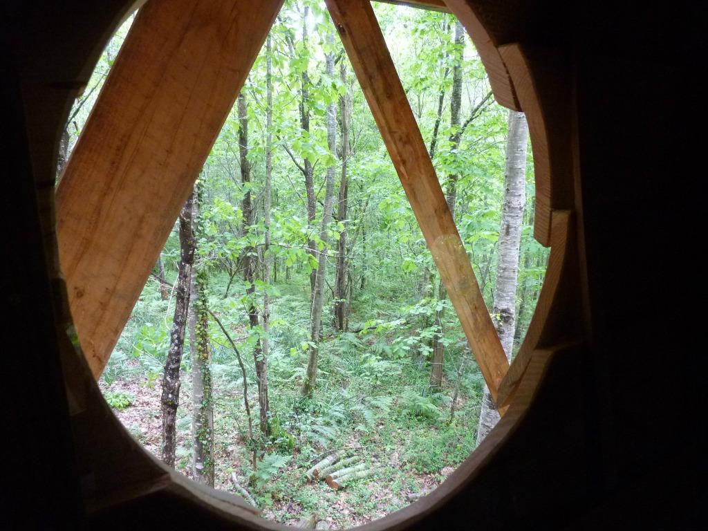 vue sur le bois