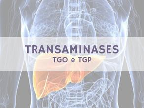 TRANSAMINASES: TGO e TGP
